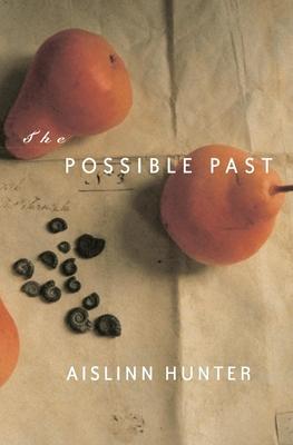The Possible Past - Hunter, Aislinn