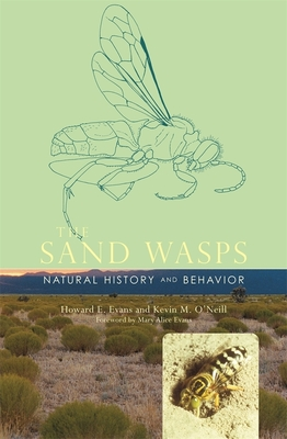 The Sand Wasps: Natural History and Behavior - Evans, Howard E, PhD, and O'Neill, Kevin M, and Evans, Mary Alice (Foreword by)