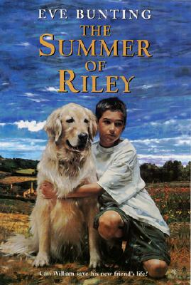 The Summer of Riley - Bunting, Eve