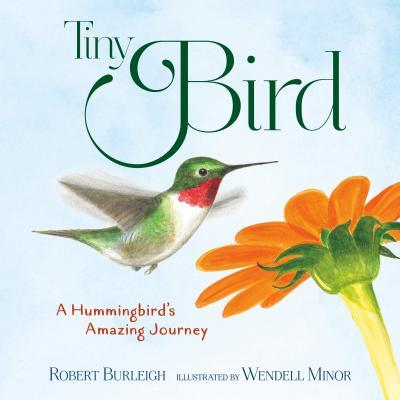 Tiny Bird: A Hummingbird's Amazing Journey - Burleigh, Robert