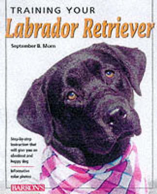 Training Your Labrador Retriever -