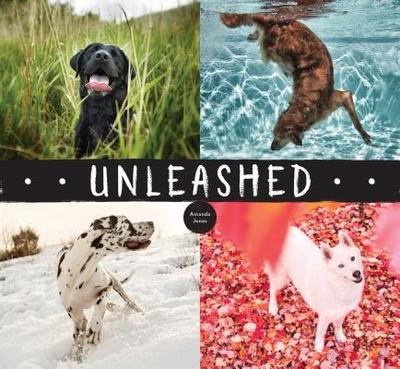 Unleashed - Jones, Amanda