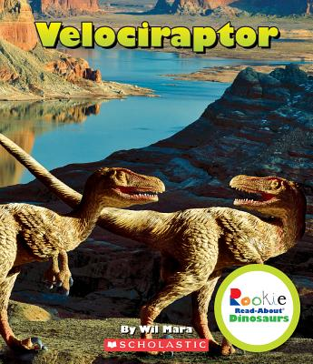 Velociraptor - Mara, Wil