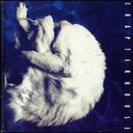 Whirlpool [Bonus Tracks]