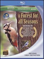 Wild Asia: A Forest for All Seasons [Blu-ray]
