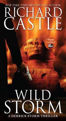 Wild Storm: A Derrick Storm Thriller - Castle, Richard